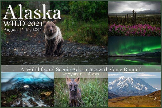 alaska-advert-2021