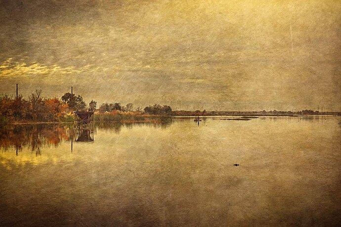 Along the Delta