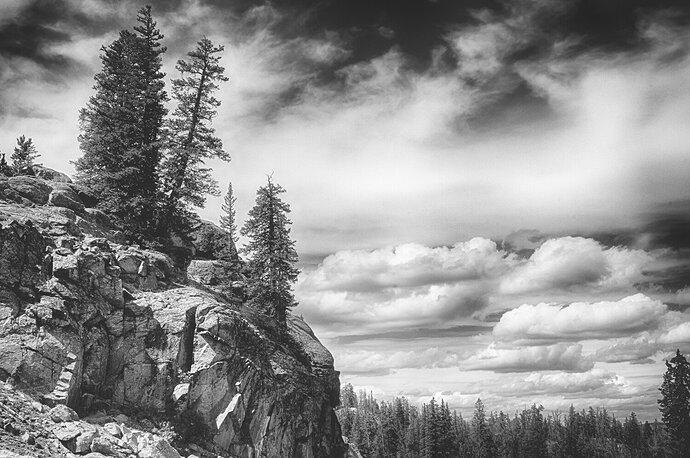 CarlSimmerman- Mountain High