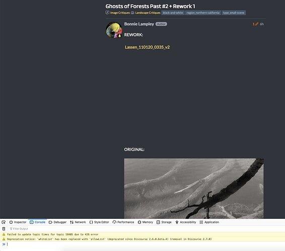 Screen Shot 2020-12-03 at 1.36.24 PM