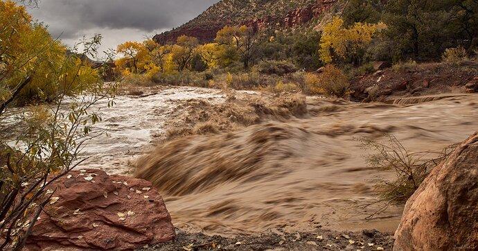 Flash Flood, Zion National Park