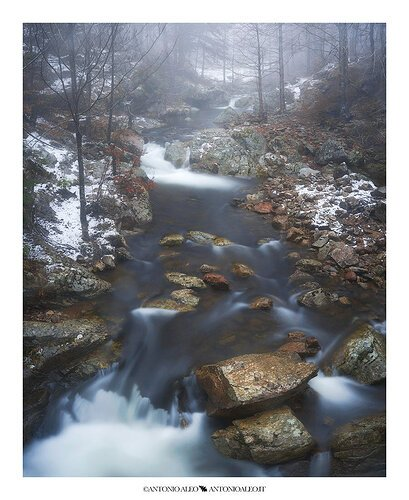 In winter, along the stream