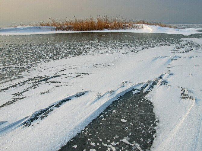 An Icy Day at the Steppe Lake